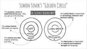 simon sinek's golden circle the science behind why productive with a purpose